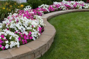 Azaleas: A Key To Creating A Beautiful Landscape Atlanta