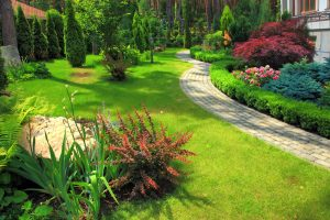 Learning More Gardening Landscaping san antonio