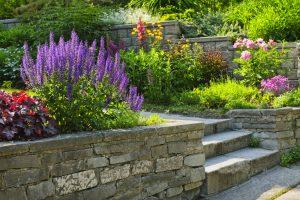 Landscape Gardening Tips landscaping albuquerque