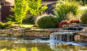 Lawn And Landscape Watering Tips chicago landscaper